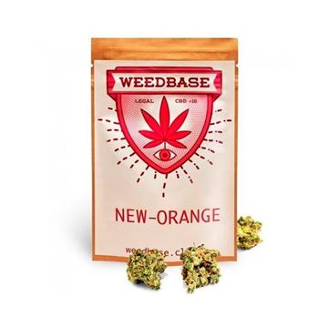 Imagen de NEW ORANGE de WEEDBASE.- 2 gr.