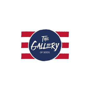 Imagen para el fabricante The Gallery