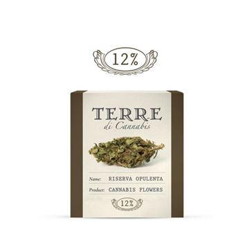 Imagen de Riserva Opulenta de Terre di Cannabis 1 gr.