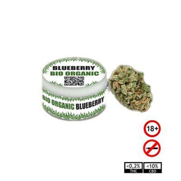 Imagen de Flores BlueBerry TUYERBA - 1 gr. o 3,5 gr.