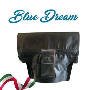 Imagen de Blue Dream Flores de Cáñamo Bio - 10gr. 20gr. o 30gr.