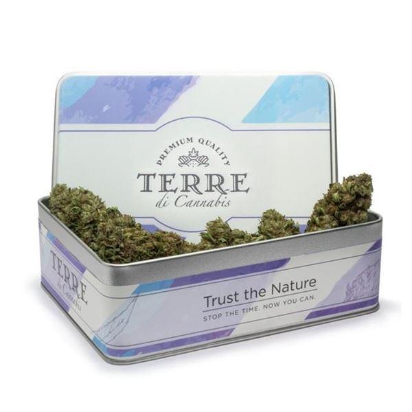 Imagen de CBG Briosa de Terre di Cannabis 10gr. y 20gr.